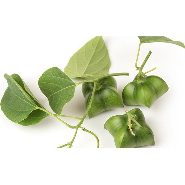 SASHAPURE -Maschera Nutriente Ristrutturante 227g